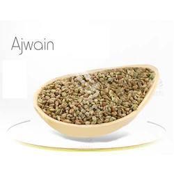 Ajwain & Trachyspermum Ammi