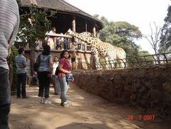 Kenya African Safari Tour Package