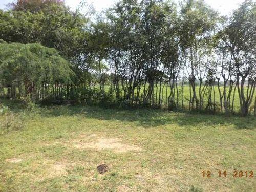 Greynagar To Vijayamangalam , Tirupur in Kunnathur, Erode, A M City