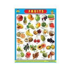 fruits wall hanging chart united publication manufacturer in
