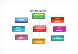 Sales Management Expertise