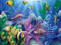 Aquarium Catalog Service