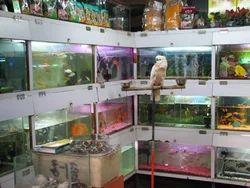Exotic World Fish Aquarium Pet Shop Manufacturer Of Exortic