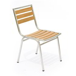 Stainless Steel SS Frame Chair