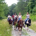 Horse Safari Tour