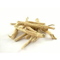 Ashwagandha Root /  Winter Cherry Withania Somnifera