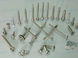 SS Screws