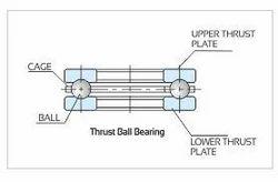 Thrust Ball Bearing