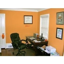 Professional & Office Painting Services