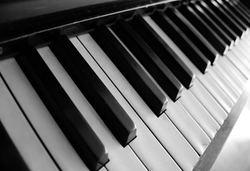 Piano and Electronic Drum Pad Retailer | Music Planet Store