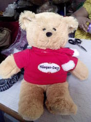 Teddy with Brand