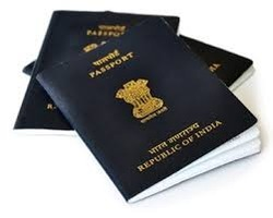 Passport Services & Consultant