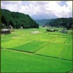 Agricultural Land Dealing