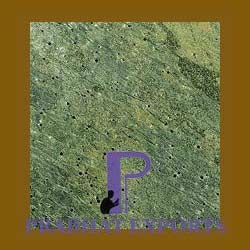 Deoli Green Natural Slate Stone