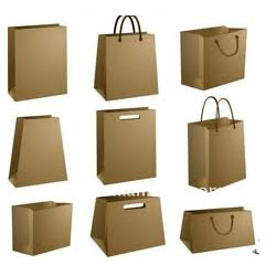 Shopping Paper Bags - Kraft Paper Bag Manufacturer from Ahmedabad