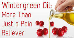 Gaultheria Oil for Pain Balms