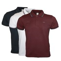 Polo T Shirt With Piping