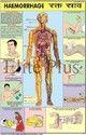 Haemorrhage Charts