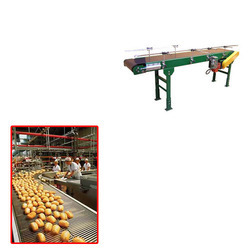 Flat Belt Conveyor For Food Industry