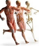 Biomechanics Physiotherapy Consultants