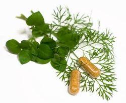 Herbal Supplement For Women