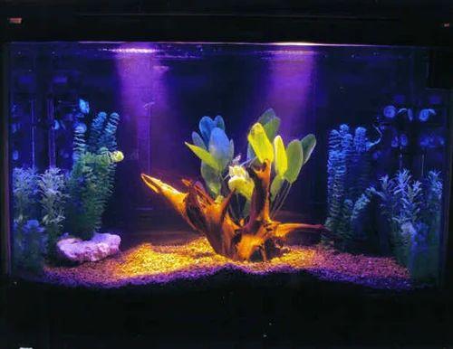 Aquarium Lights Reptiles Light - Reptiles Aquarium Light
