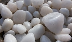 White Polish Pebbles