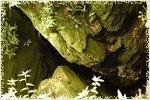 Guna Caves Kodaikanal