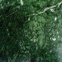 绿色大理石瓷砖