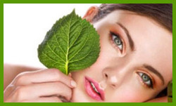 Rejuvenation And Beauty Therapies
