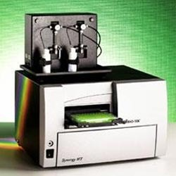 Reporter Assay System