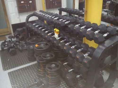 Garage gym for sale includes rogue body champ everlast stall