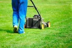 Garden Maintenance in Hyderabad
