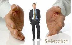 IP Resources Recruitment