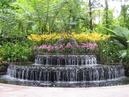Designer Waterfall Landscaping Service