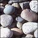 Mix Colored River Bed Pebbles