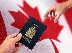 Visa/ Filing Consultancy