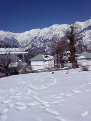 1 acre Land at Nadi Dharamshala