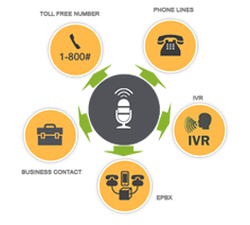 IVR and Toll Free Services