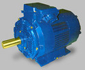 Flame Proof  Industrial Type LT Motors