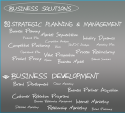 Business Solutions Services