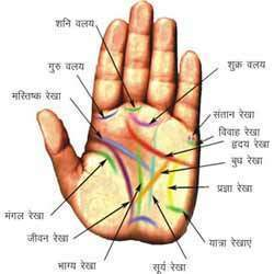 How To Find Vedic Astrology Sign