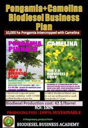 Pongamia Camelina Biodiesel Business Plan 10000 ha