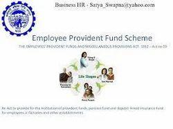 Provident Fund Consultants in Navi Mumbai, प्रोविडेंट