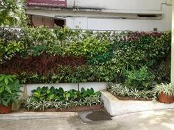 The Real Vertical Garden Solutions .we Exports The Vertical Garden Modules  With An Innovative Technology .