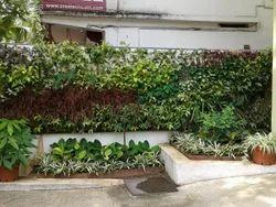 Vertical Garden - The Real Vertcal Garden Solution.