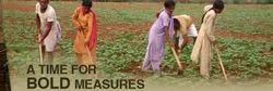 Agro Based Livelihoods