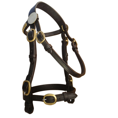 Think, you Kt so leather harness think