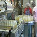 Juice Plant Consultancy
