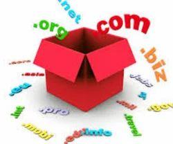 Domain TLD Registration